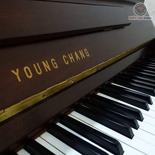 YoungChangBrown-Nhat-Tam-Piano-04